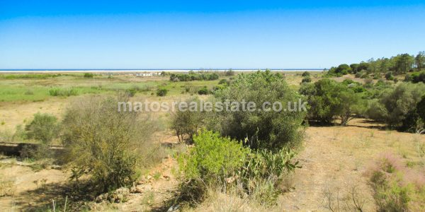 Amazing Farm with Big Potential Near Santa Luzia Beach-14
