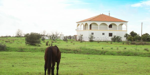 lovely-3-bedroom-farmhouse-with-stables-46